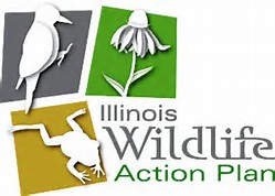 Landowner Resources Illinois Wildlife Action Plan Chris Evans